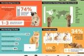 Pets make great binge paw-tners from a Netflix study