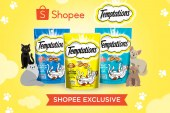 Temptations cat treats exclusively available online on Shopee