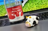 Review: Limited-editon 2021 Kingston Mini Cow USB Flash Drive 64GB Unboxing + Key Features