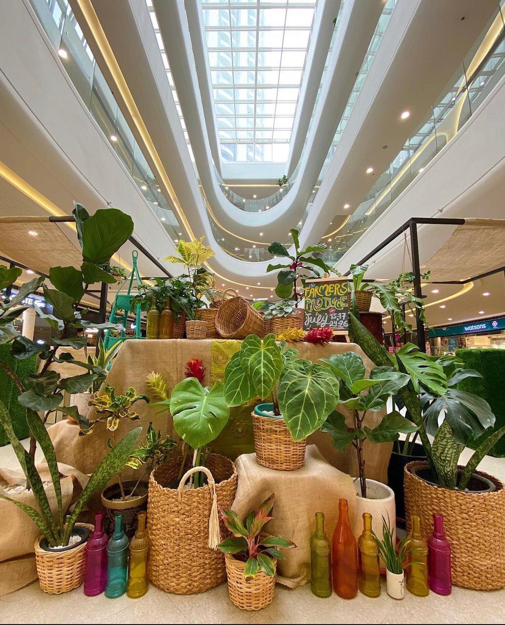 SM Supermalls brings back Farmers Produce with seasonal and organic products from June 3rd to July 25th